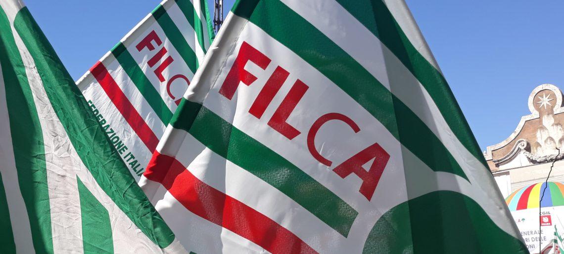 """Settore costruzioni, crisi e ricostruzione post sisma, in Umbria la Filca Cisl: """"Dobbiamo fare squadra e dirigere le scelte verso un'edilizia green"""""""